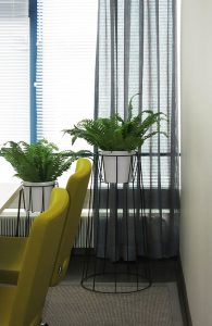 Neuvotteluhuoneen sisustuksessa on käytetty väriä ja viherkasveja